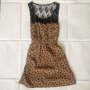Forever 21 Brown Polka Dot & Lace Dress